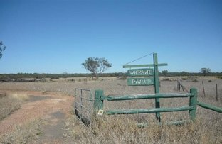 Picture of 38672 Leichhardt Highway, Miles QLD 4415
