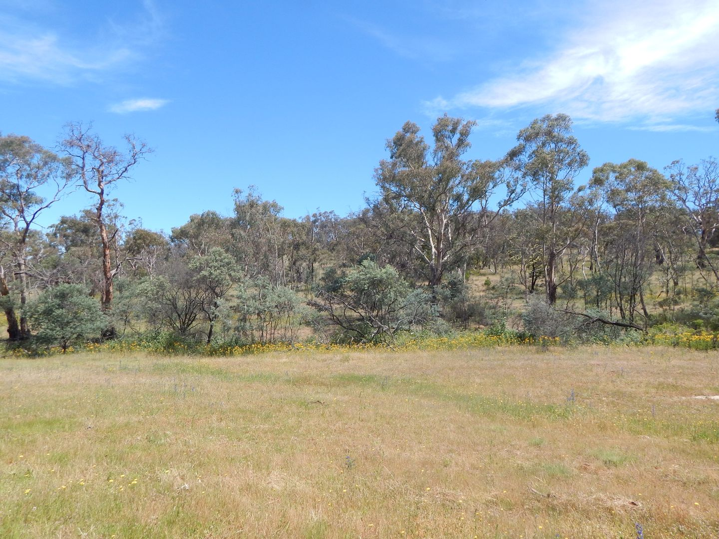 Lots 1 & 2 Old Dry Plains Rd, Cooma NSW 2630, Image 1