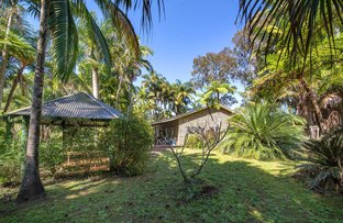 Picture of 536 The Pocket Road, The Pocket NSW 2483