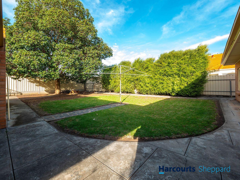 17 Somerset Ave, Fulham Gardens SA 5024, Image 2