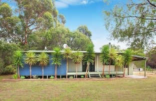Picture of 13446 Bussell Highway, Deepdene WA 6290