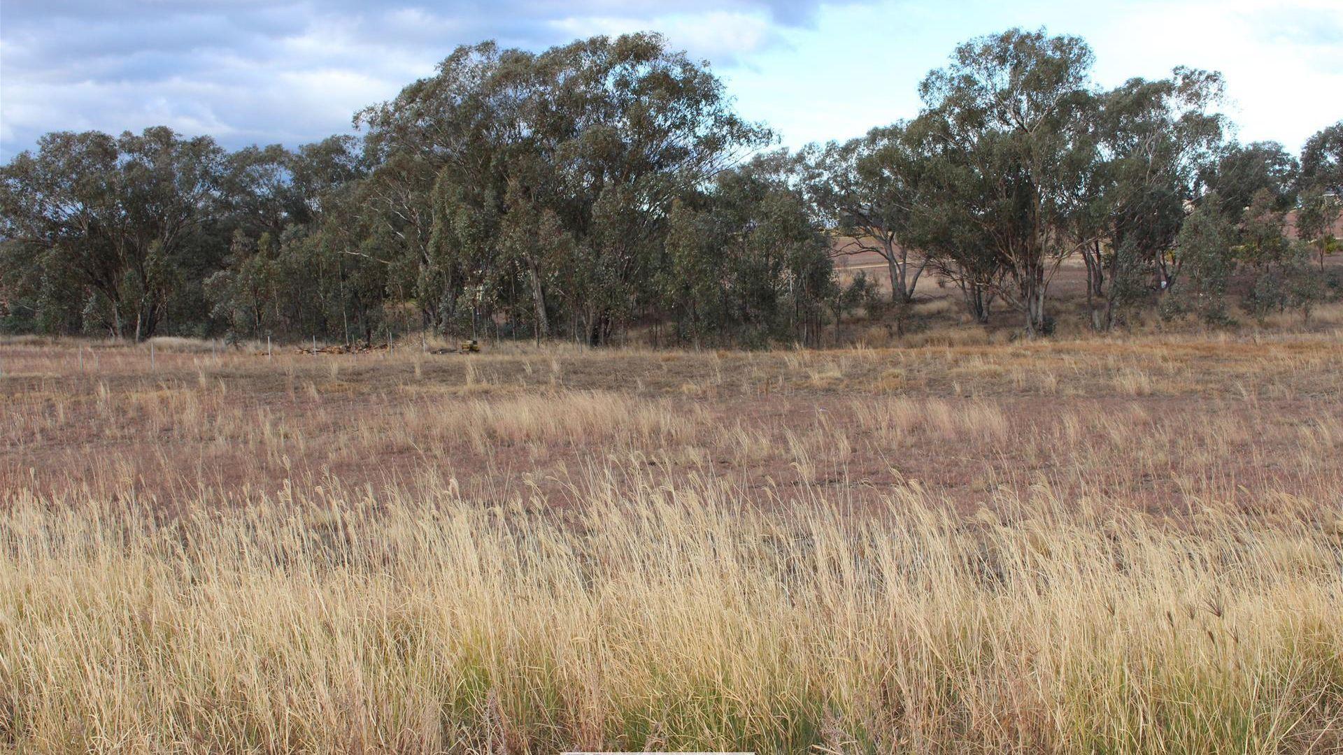 30 Talbragar Close, Inverell NSW 2360, Image 2