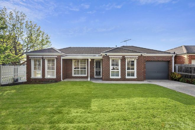 Picture of 15 Drysdale Avenue, HAMLYN HEIGHTS VIC 3215