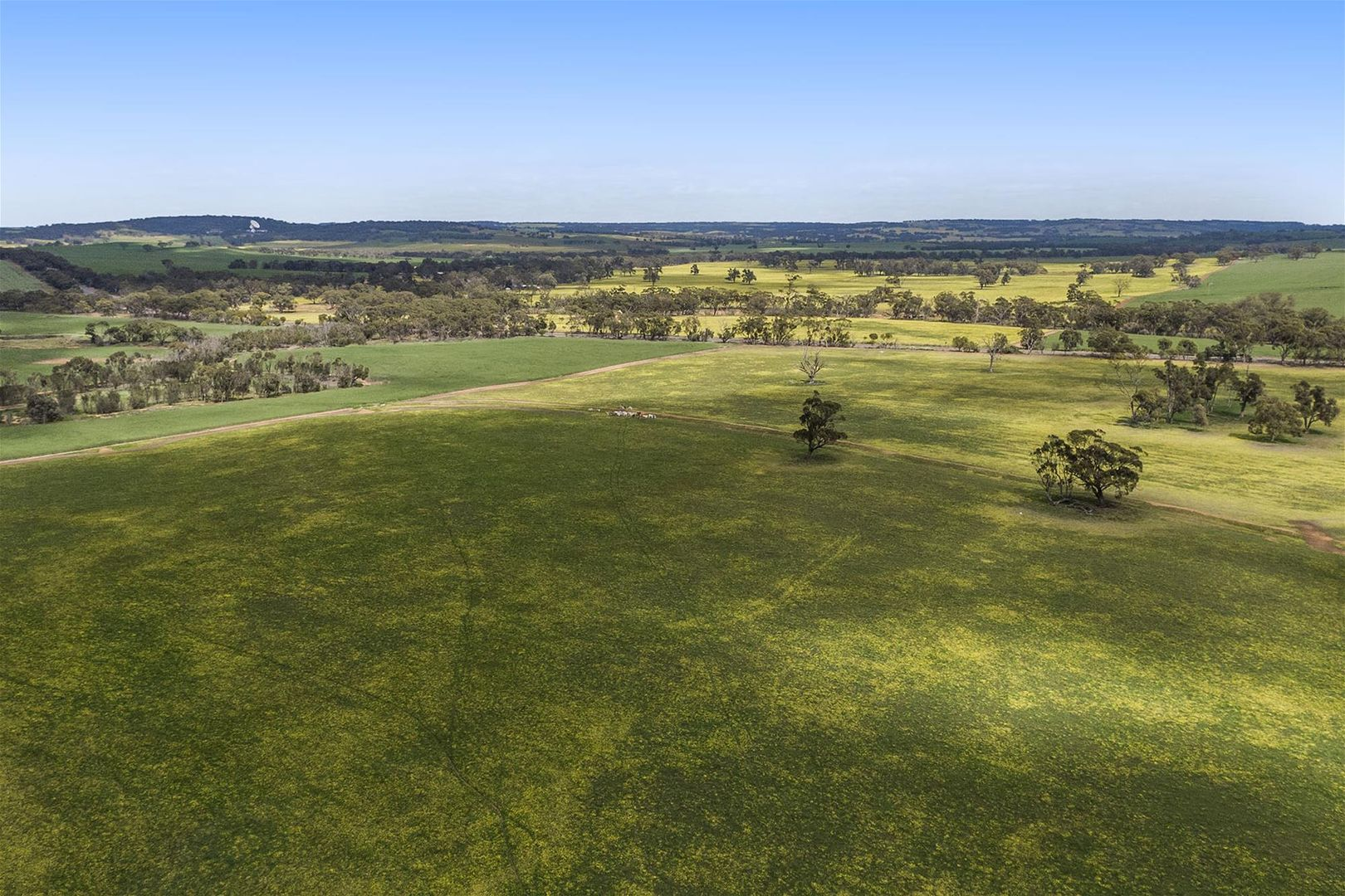 10986 Great Northern Highway, New Norcia WA 6509, Image 0