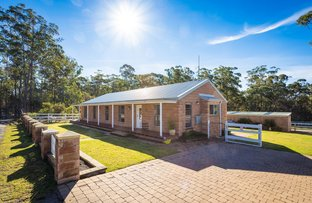 Picture of 171 Shady Lane, Wallagoot NSW 2550
