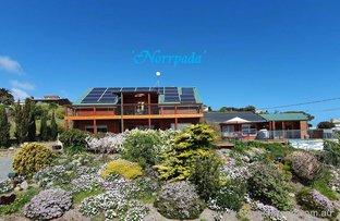 Picture of 18 Sheidow Terrace, Marino SA 5049