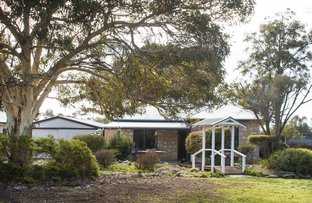 Picture of 9 Peake Terrace, Coonalpyn SA 5265