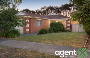 Picture of 53 Hedgeley Drive, Berwick VIC 3806