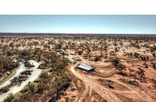 Picture of Tilpa NSW 2840