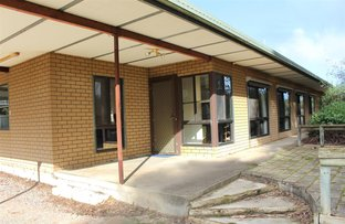 Picture of 48 Albert Parade, Bordertown SA 5268