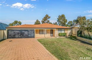 Picture of 7 Shelter Cove, Banksia Grove WA 6031
