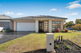 Picture of 10 Buckskin Drive, Clyde North VIC 3978