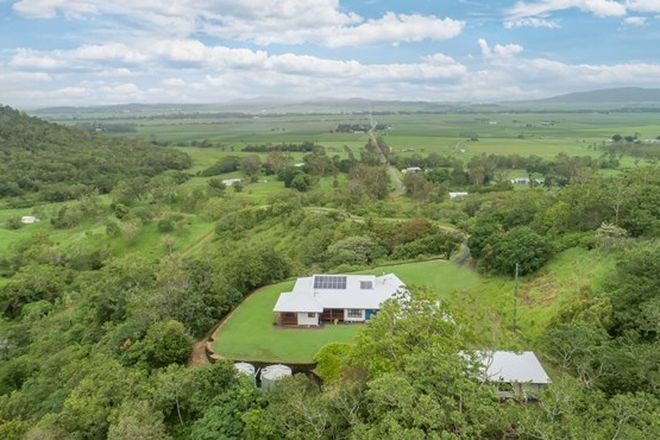 Picture of 145 Coxs Road, BALNAGOWAN QLD 4740