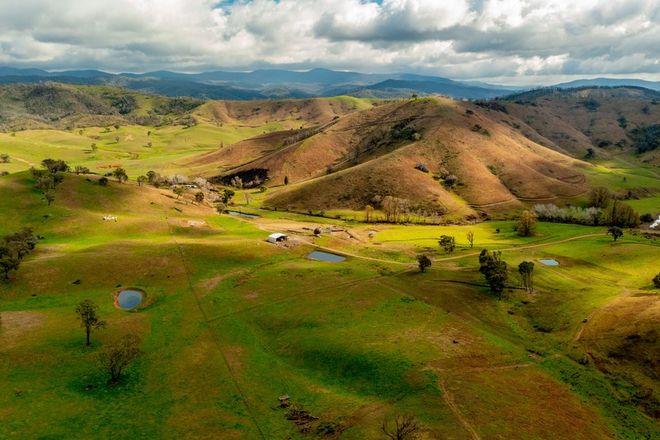 Picture of 400 Horse Creek Road, JINGELLIC NSW 2642