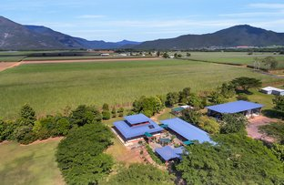 Picture of 136 Crossland Road, Gordonvale QLD 4865