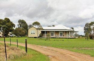 19395 Gwydir Highway, Moree NSW 2400