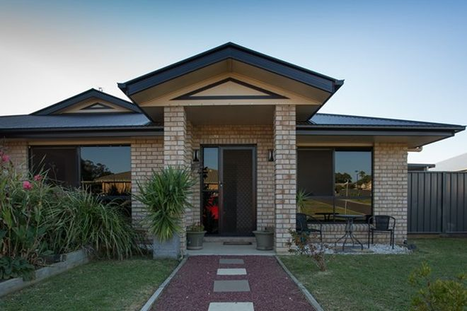 Picture of 19 Rose Lea Court, WARWICK QLD 4370