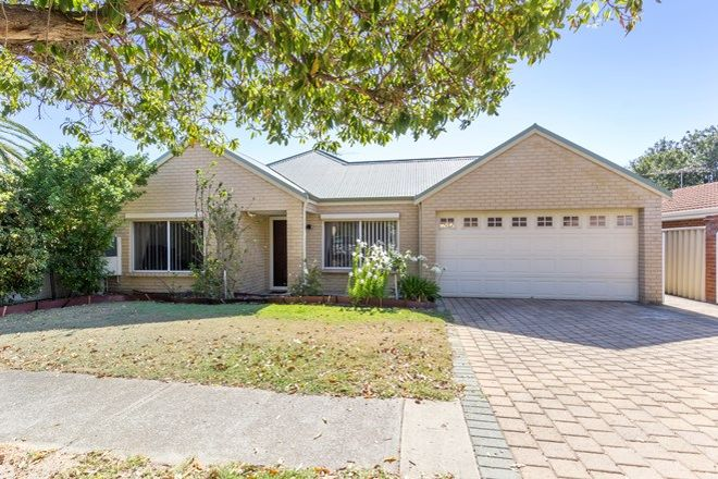 Picture of 183a Flamborough Street, DOUBLEVIEW WA 6018