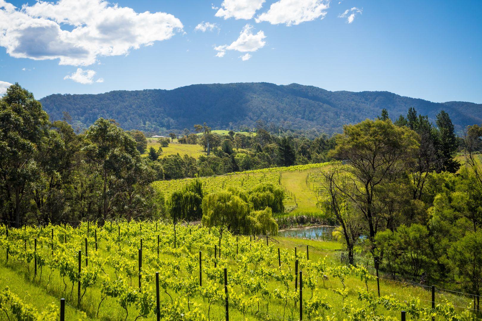 46 Terlich Road, Verona NSW 2550, Image 1