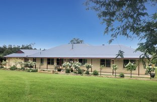 Picture of 220 Upper Stratheden Rd, Kyogle NSW 2474