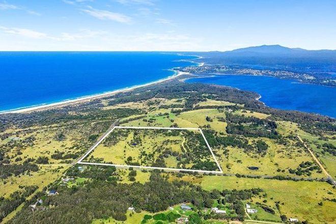 Picture of 574 Bingi Road, BINGIE NSW 2537