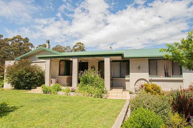 Picture of 176 Kerrisons Road, HOLWELL TAS 7275