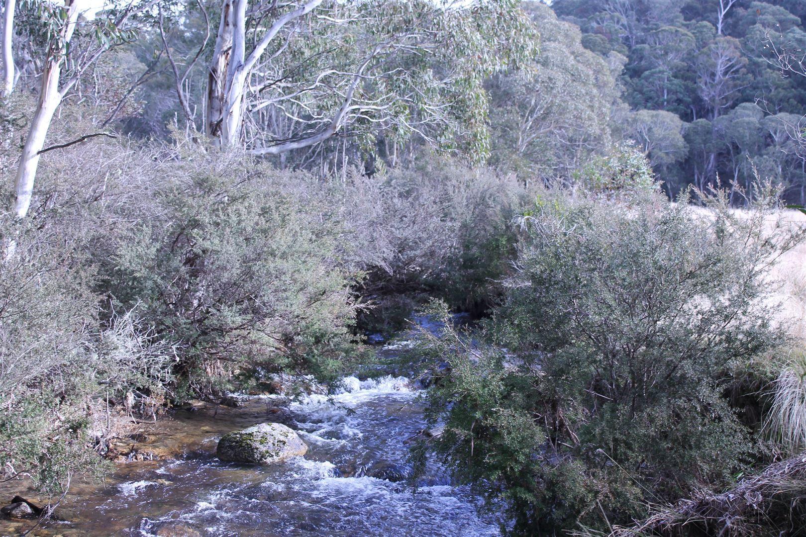 1080 Hereford Hall Road, Braidwood NSW 2622, Image 0