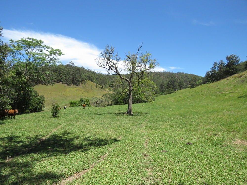 Burrapine NSW 2447, Image 0
