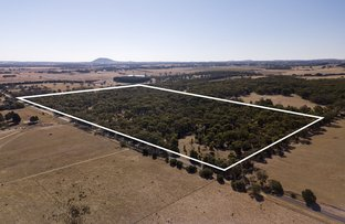 Picture of 923 Yendon-Egerton Road, Millbrook VIC 3352