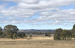 Picture of 502 Patrick Road, Dunedoo NSW 2844