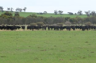 Picture of New Lot 2 Great Southern Highway, Beverley WA 6304