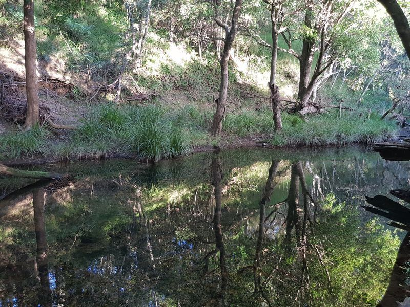 Lot 25 Haigh Cresent, Samford Valley QLD 4520, Image 0