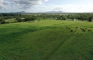 Picture of 512 Tondara Road, Guthalungra QLD 4805