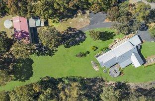 41 Pup Road, Bilpin NSW 2758