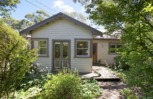 5 yester, Wentworth Falls NSW 2782