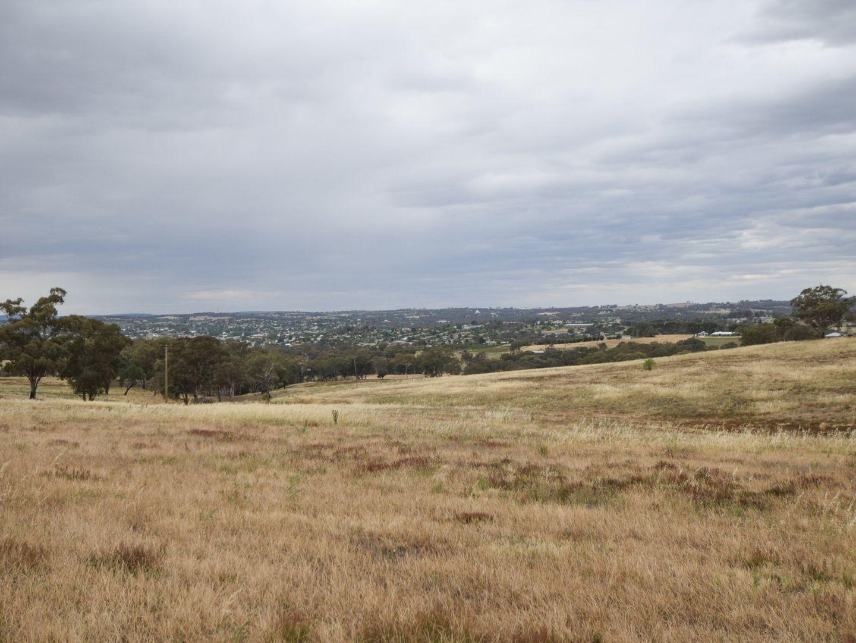 289 Wickham Lane, Young NSW 2594, Image 2