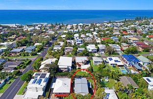 Picture of 3/37 Edmund Street, Shelly Beach QLD 4551