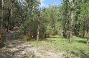 Picture of 475 Webbs Creek Rd, Webbs Creek NSW 2775