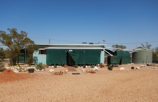 Picture of WLL 15100 Potch Point, Lightning Ridge NSW 2834