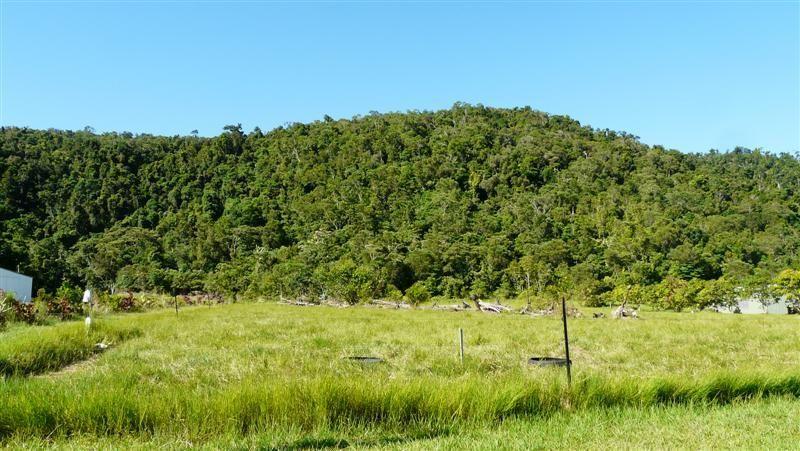 32 Mt Leeper Road, MOURILYAN HARBOUR QLD 4858, Image 0