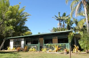 Picture of 346 Midge Point Rd, Bloomsbury QLD 4799