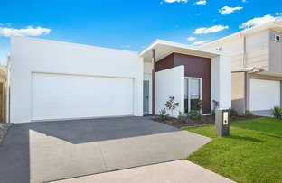 Picture of 7 Causeway Court, Mountain Creek QLD 4557