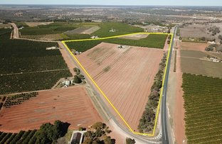 Picture of Lot 939 Mourquong  Road, Mourquong NSW 2739