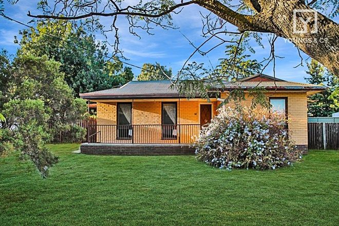 Picture of 10 Queen St, DOOKIE VIC 3646