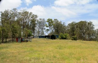 Picture of 1436 Sextonville  Road - DOBIES BIGHT, Kyogle NSW 2474