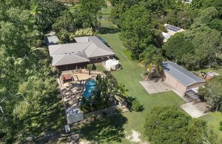Picture of 36 Alvisio Court, Narangba QLD 4504