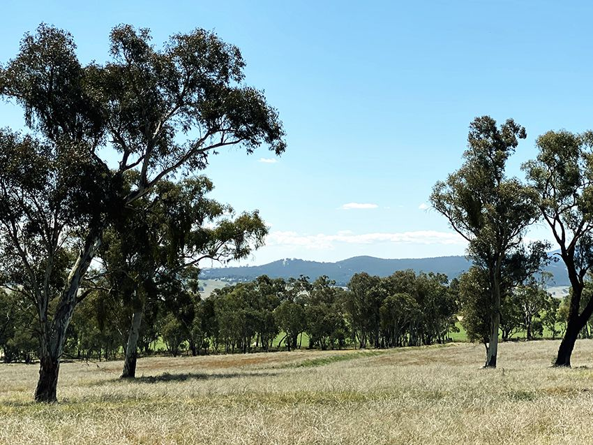 Lot 125, 1488 Mutton Falls Road, O'Connell NSW 2795, Image 1