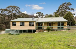 Picture of 25 Balmer Road, Reedy Creek VIC 3658