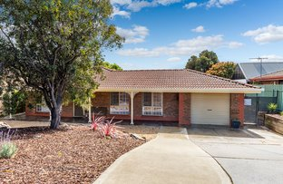 Picture of 110 Hurling Drive, Mount Barker SA 5251