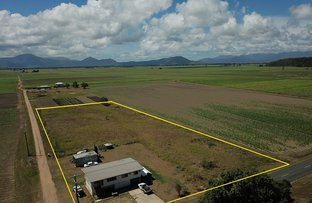 Picture of 291 Cooks Lane, Ingham QLD 4850